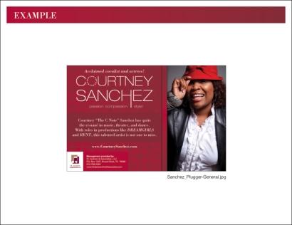 Sanchez_Brand-Style-Guide_4